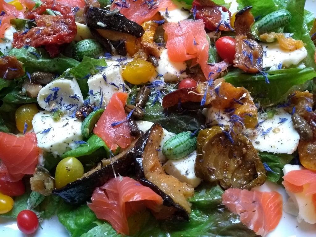LCHF-Tellerspione KW 45 - 2017 - Lachsforelle an buntem Salat